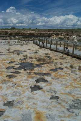 Clayton Lake Dinosaur Tracks, New Mexico